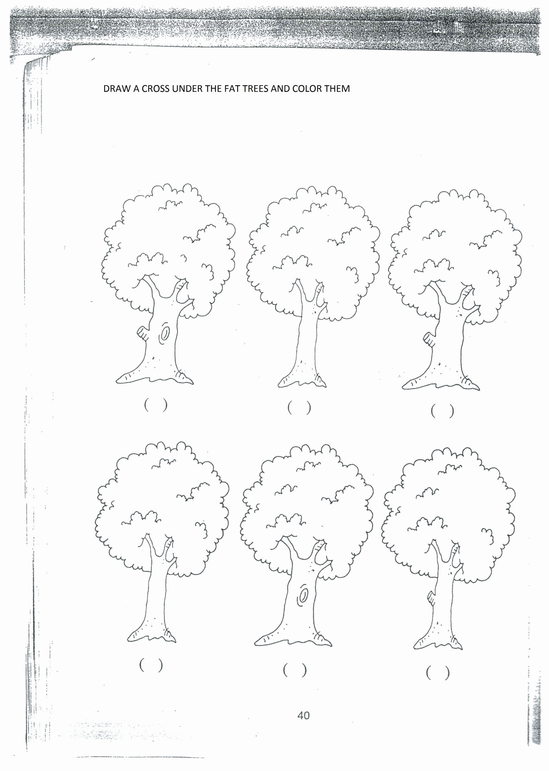 Thick and Thin Worksheets for Preschoolers Beautiful Thick and Thin Colouring Worksheet