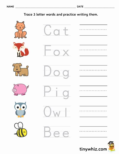 Three Letter Words Worksheets for Preschoolers Awesome Free Printable Trace and Write Letter Words Tiny Three