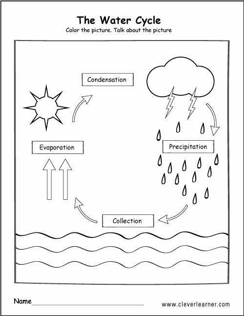 Uses Of Water Worksheets for Preschoolers Best Of Pin by Kenna Y On Science In 2020