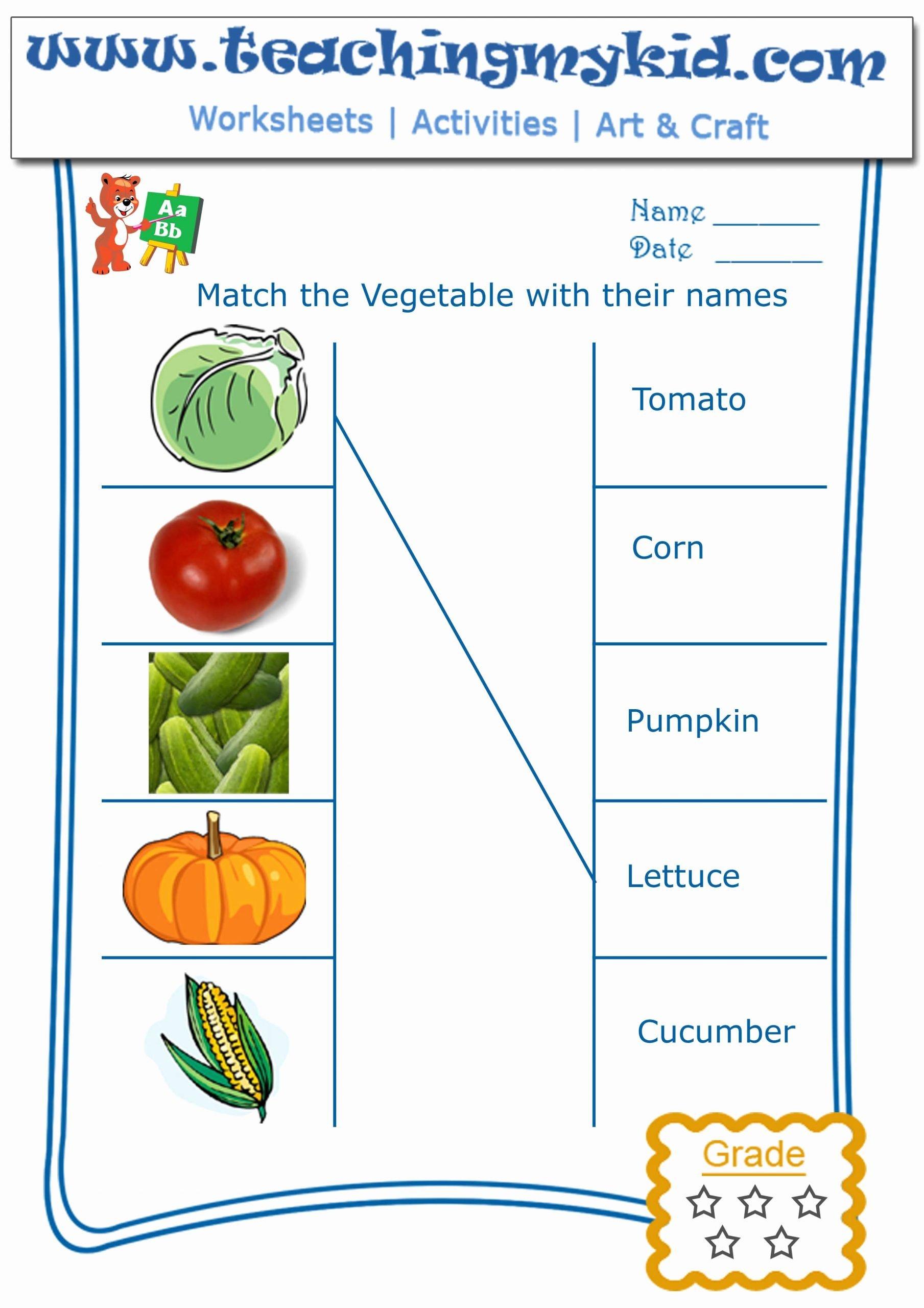 Vegetables Worksheets for Preschoolers Beautiful Kindergarten Worksheet Match Ve Ables with their Names 2