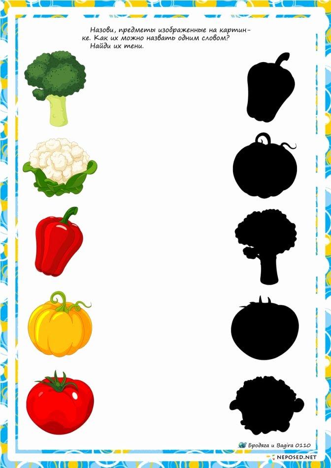 Vegetables Worksheets for Preschoolers Fresh Food Worksheetsool Fruits and Ve Ables Inspirations