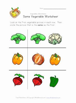 Vegetables Worksheets for Preschoolers Inspirational Same Ve Able Worksheet