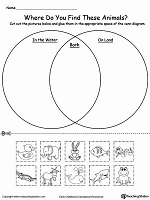 Water Worksheets for Preschoolers Awesome Venn Diagram Animals In Water and Land