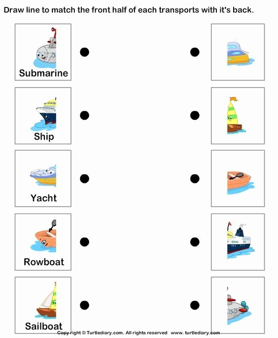 Water Worksheets for Preschoolers Beautiful Worksheets for Kids Printable Worksheets