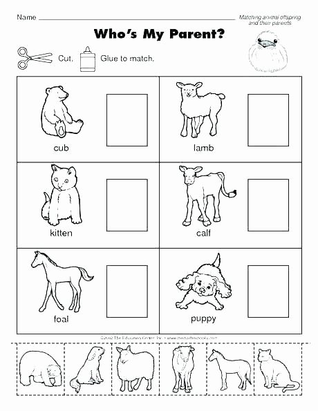 Wild Animal Worksheets for Preschoolers Best Of Animals Worksheets for Kids Wild and Domestic Kindergarten