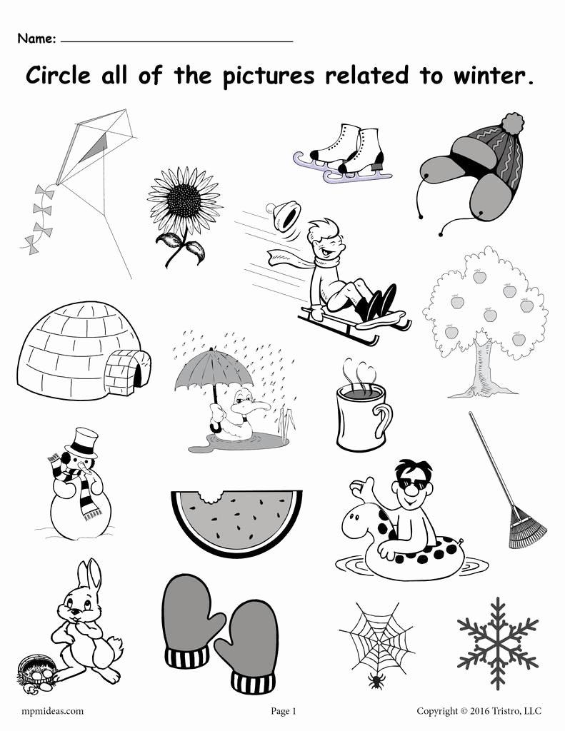 Winter Worksheets for Preschoolers top Circle What Belongs Printable Winter Worksheet