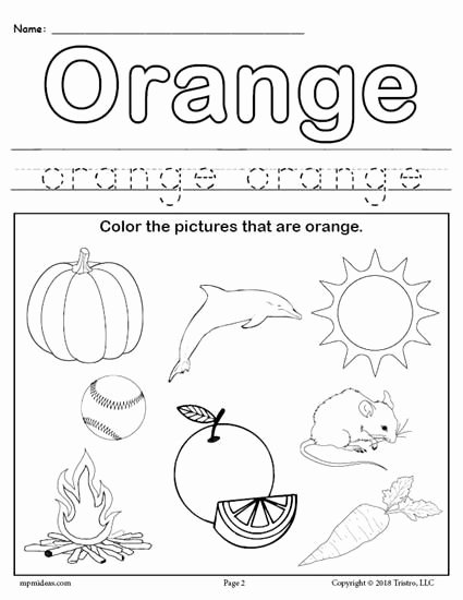 Worksheets for Preschoolers On Colors Fresh Color orange Worksheet