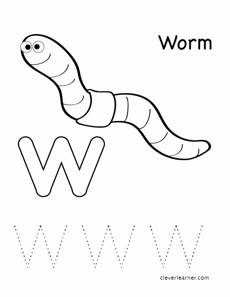 Worm Worksheets for Preschoolers Best Of W is for Worm Letter Worksheets for Preschool