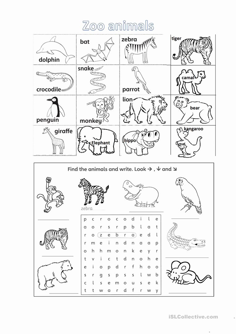 Zoo Animal Worksheets for Preschoolers Best Of Zoo Animals Worksheet with Listening Tasks English Esl