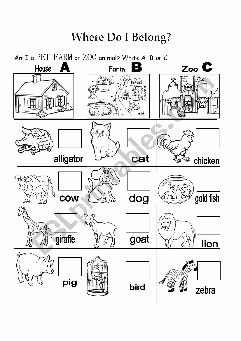 Zoo Animal Worksheets for Preschoolers Fresh Pet Farm Zoo Esl Worksheet by Teacherrla