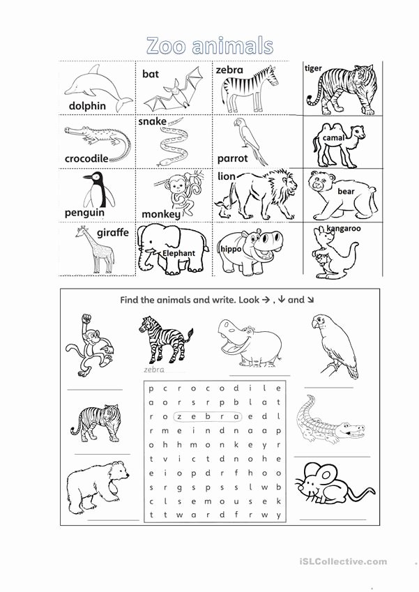 Zoo Animal Worksheets for Preschoolers top Zoo Animals Worksheet with Listening Tasks English Esl