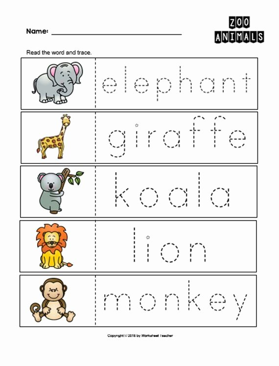 Zoo Worksheets for Preschoolers top 10 Arctic Animals Preschool Curriculum Activities Preschool