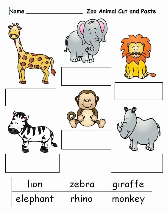 Zoo Worksheets for Preschoolers top Pinterest